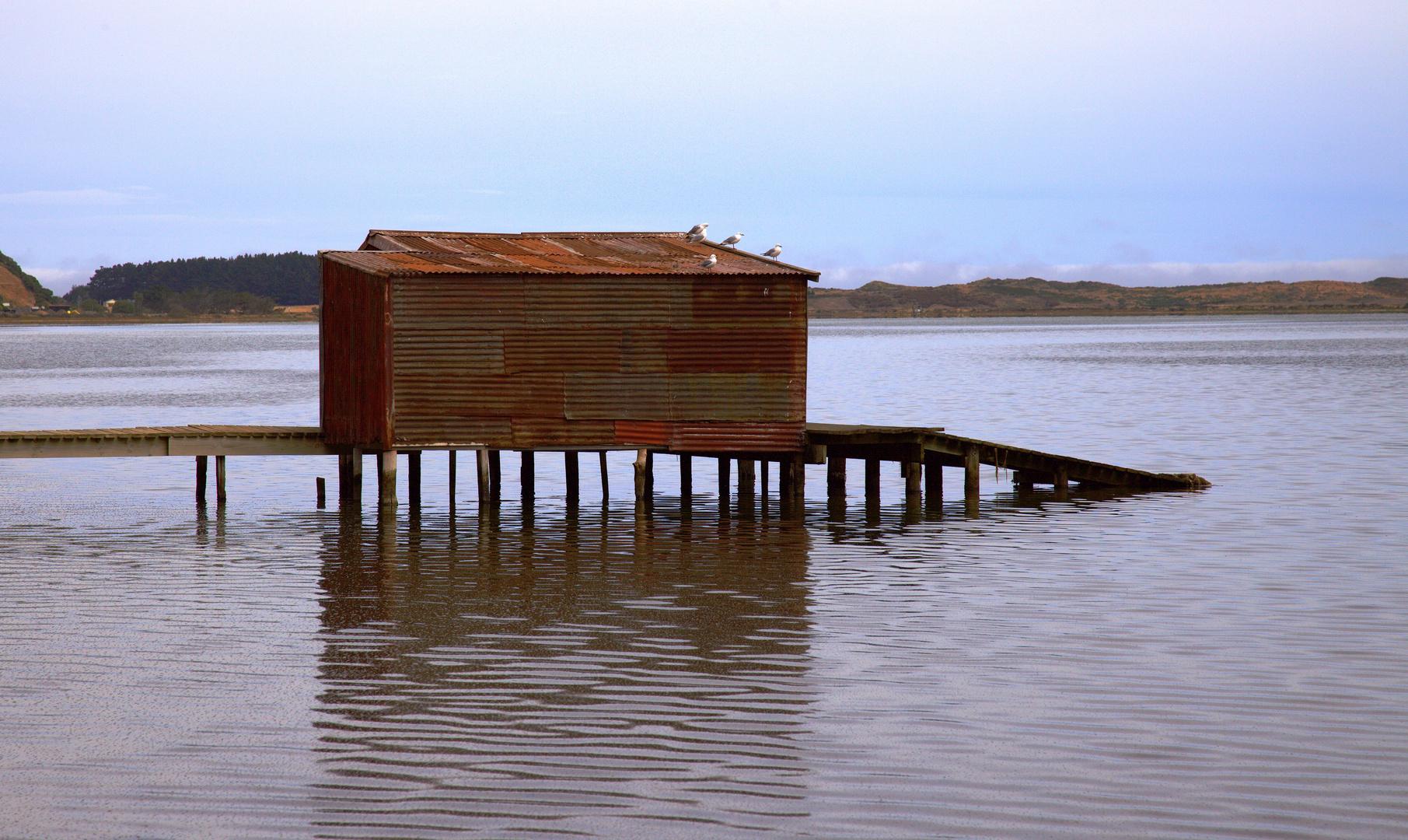 Otago Boatshed (Allans Beach Rd/Hoopers Inlet)