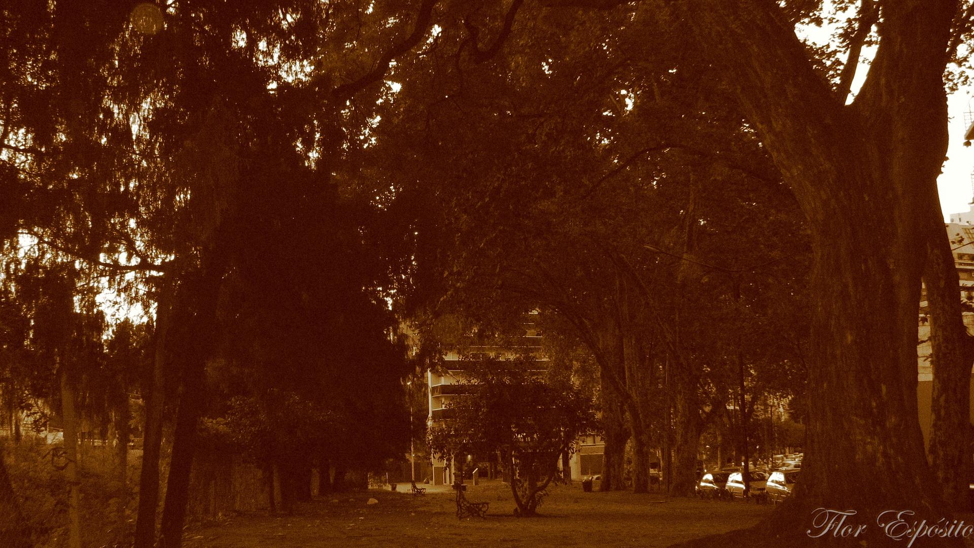 Otoño Buenos Aires
