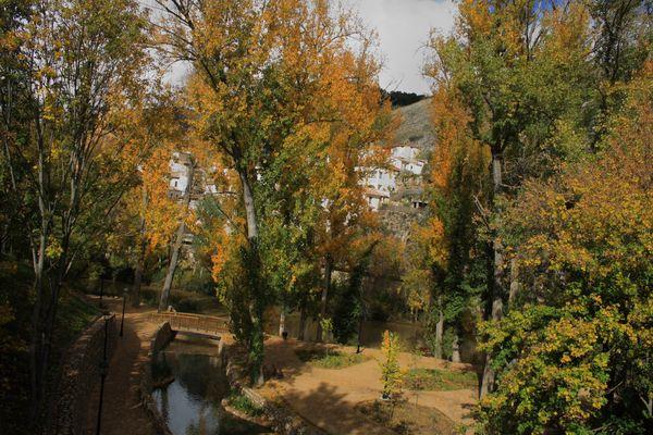 otoño en el parque