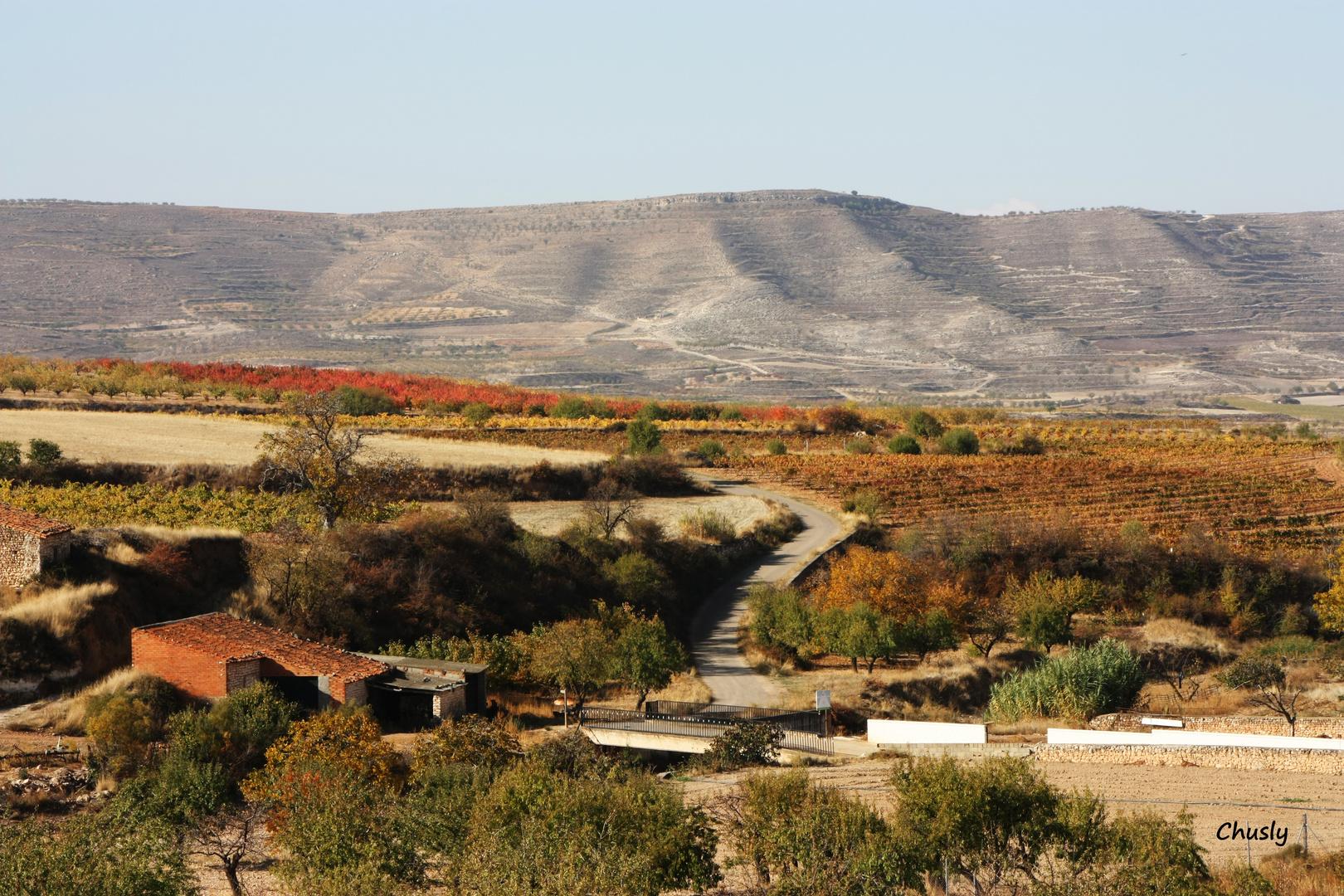 Otoño en el valle del Peregiles - Fall in the Peregiles valley