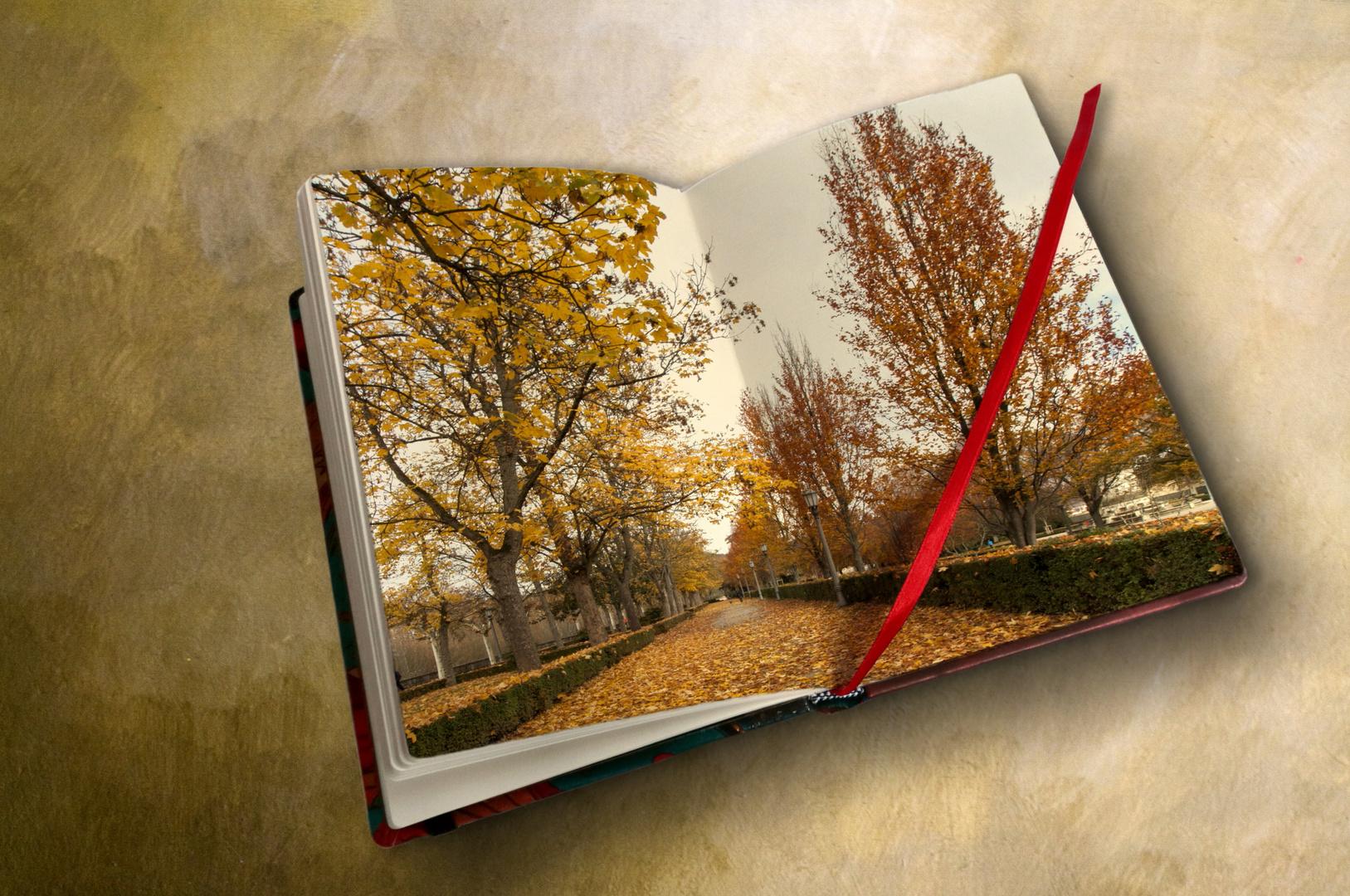 otoño en mi cuaderno