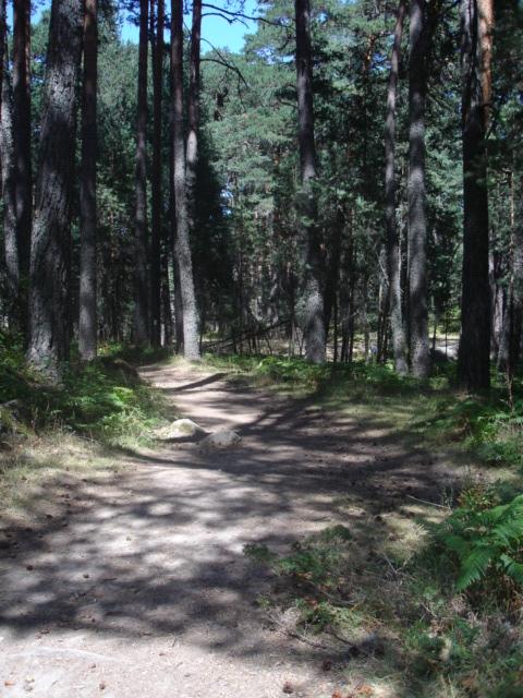otra de caminos