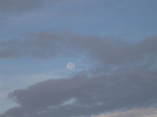 Otro amanecer...otra luna
