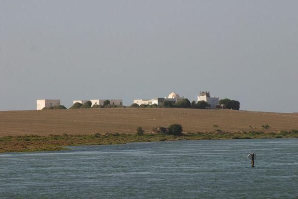 Oualidia La lagune