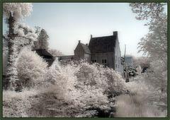 Oud-Beijerland Hof