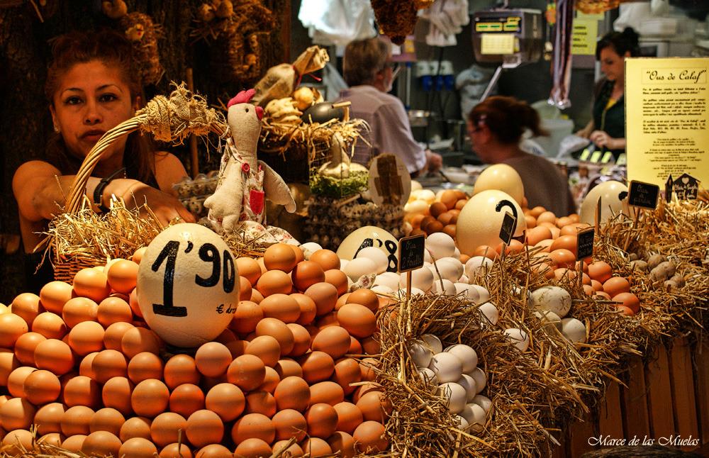 ...ous de Calaf...