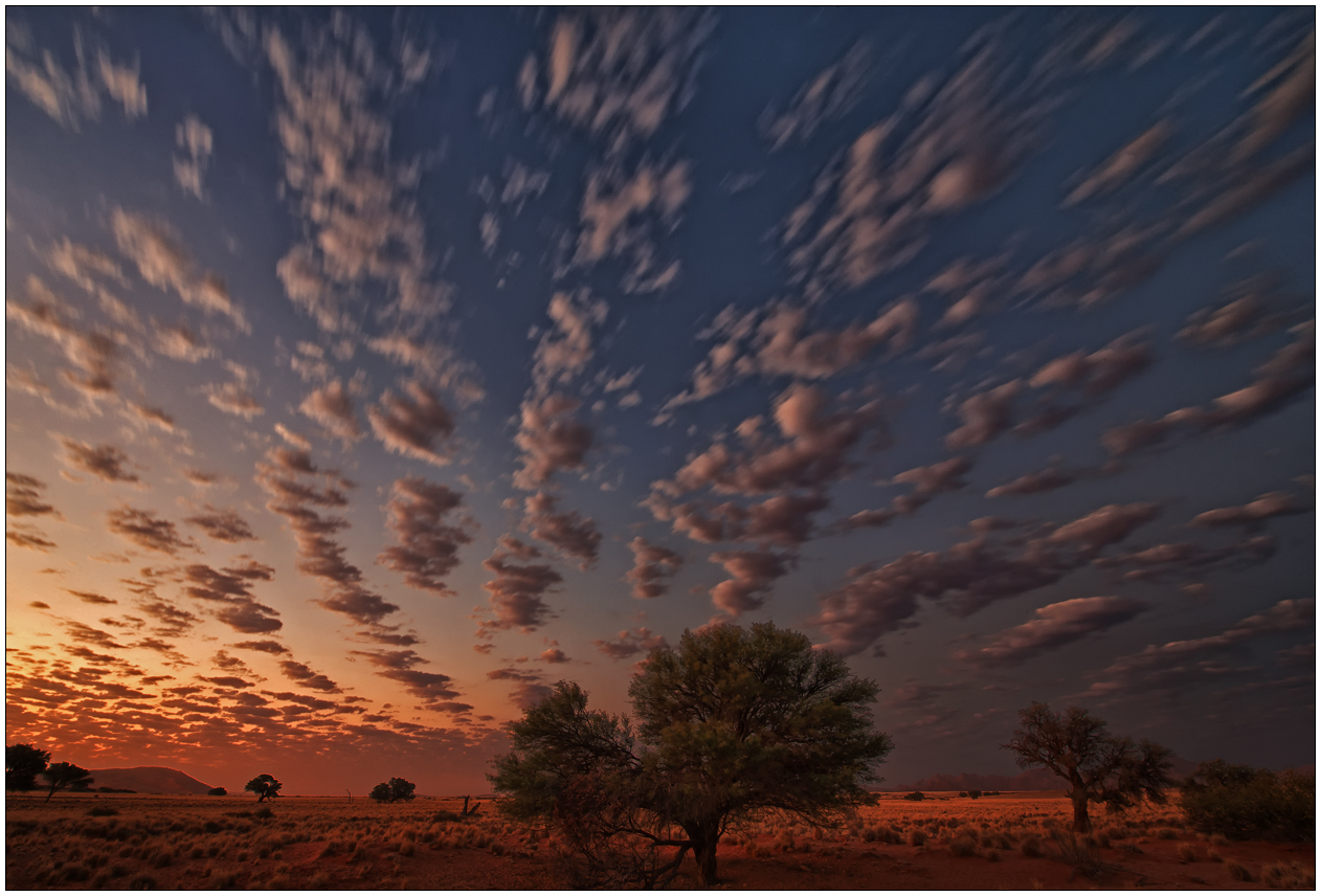 Out of Africa [61] - African Sky