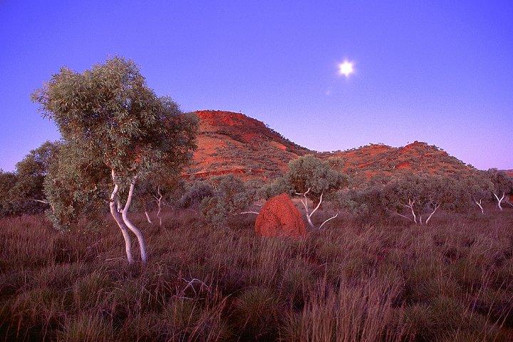 Outback - Karinjini, Westaustralien