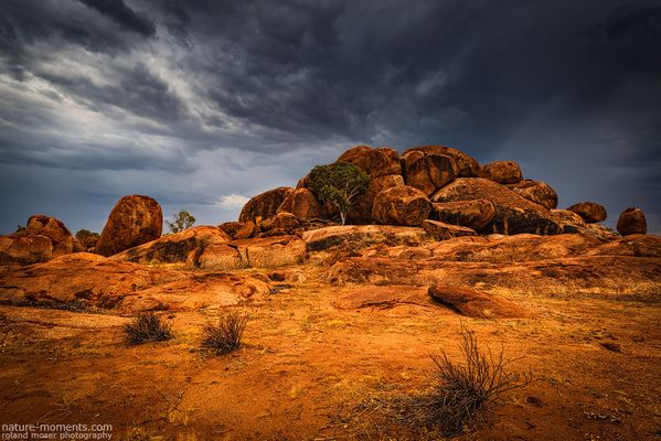 Outback Light