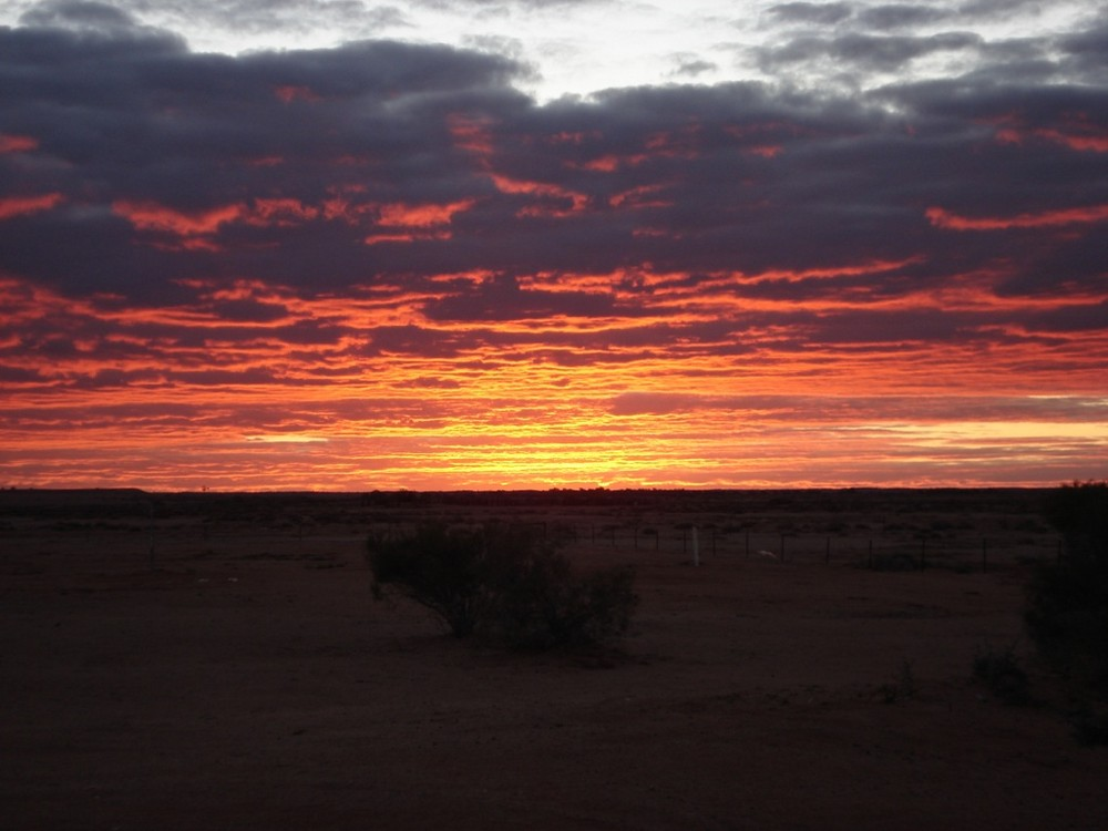 Outback Sunlight