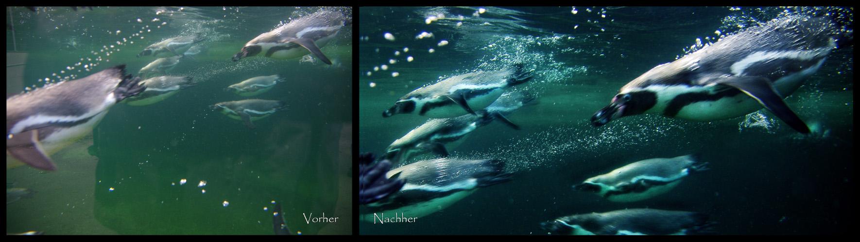Outing #1: Vorher/Nachher