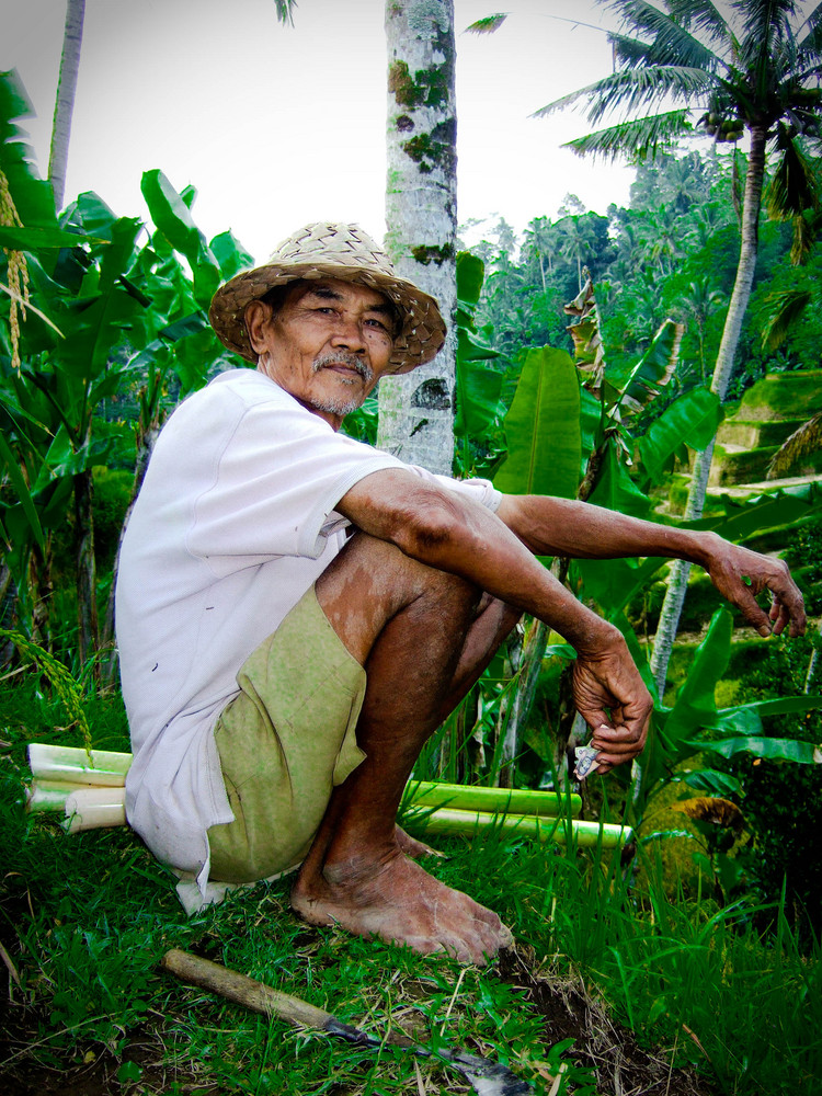 Ouvrier des rizières balinaises