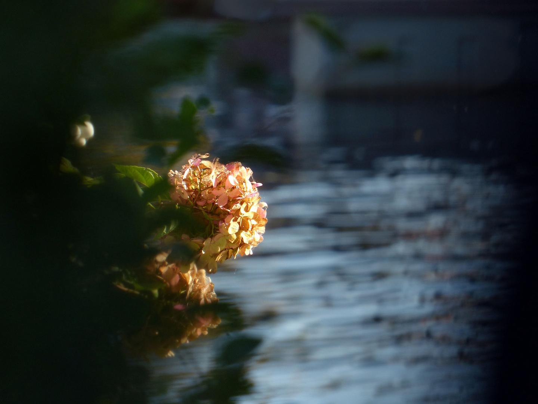 ... over het water