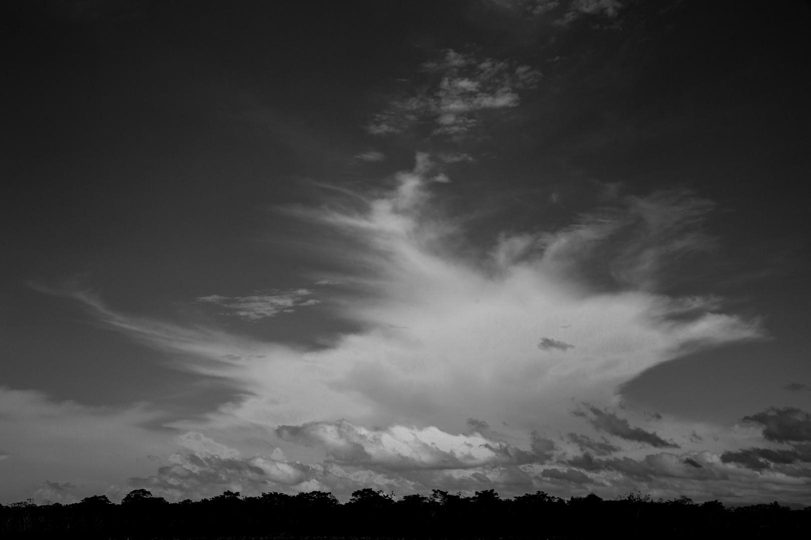 over the Amazon Jungle