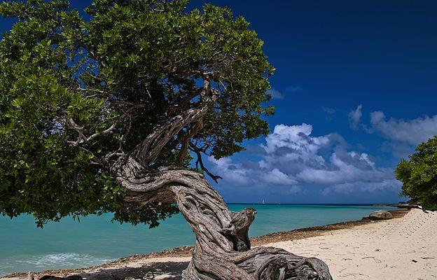Overview of Caribbean - Motiv vom Weltenbummler