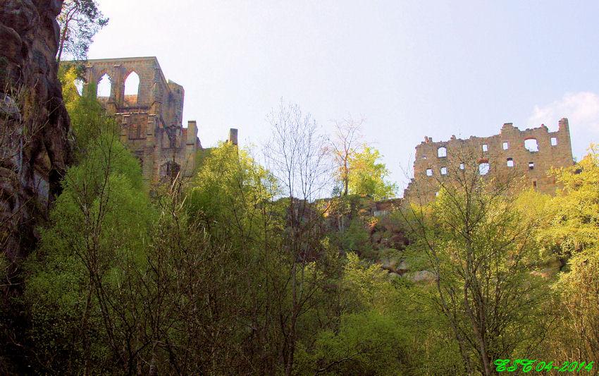 Oybin - Blick zur Burg vom Hausgrund aus