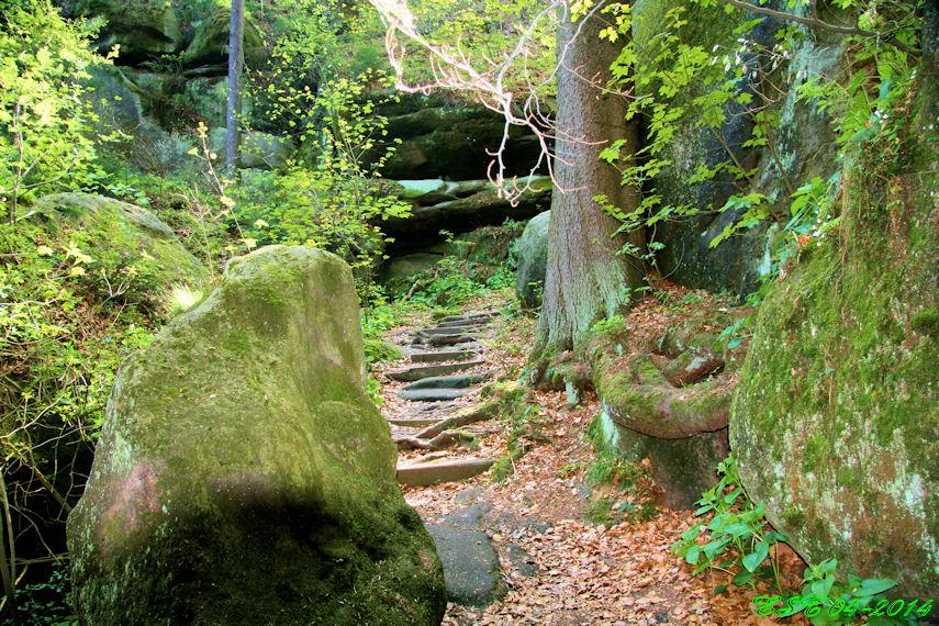Oybin - Weg durch den Hausgrund zur Burg Oybin
