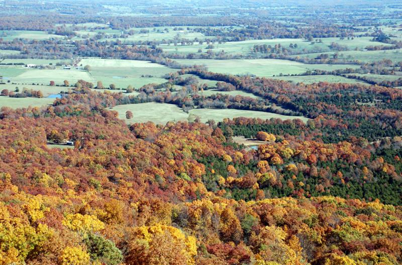 Ozark Autumn 1