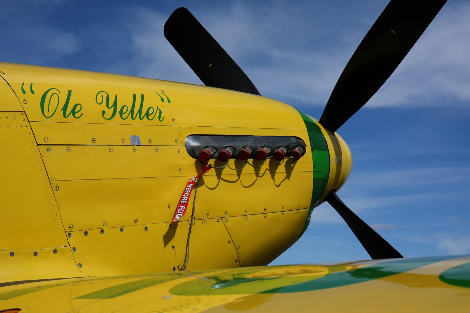 "P-51 ""Ole Yeller"""