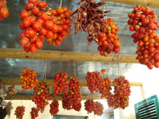 P come Pomodori Peperoncini
