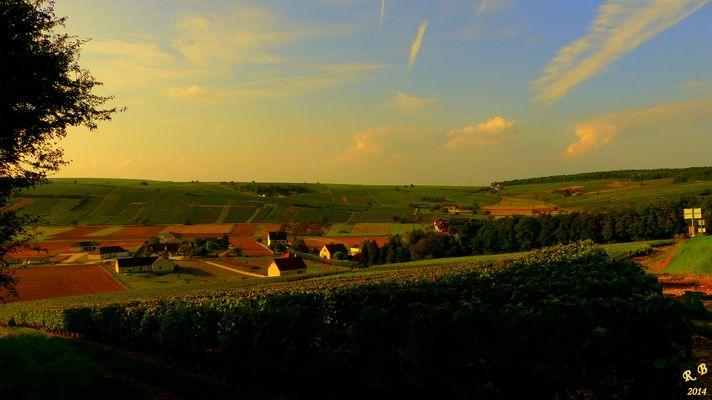 P1050505 (coucher de soleil sur les vignobles du SANCERROIS