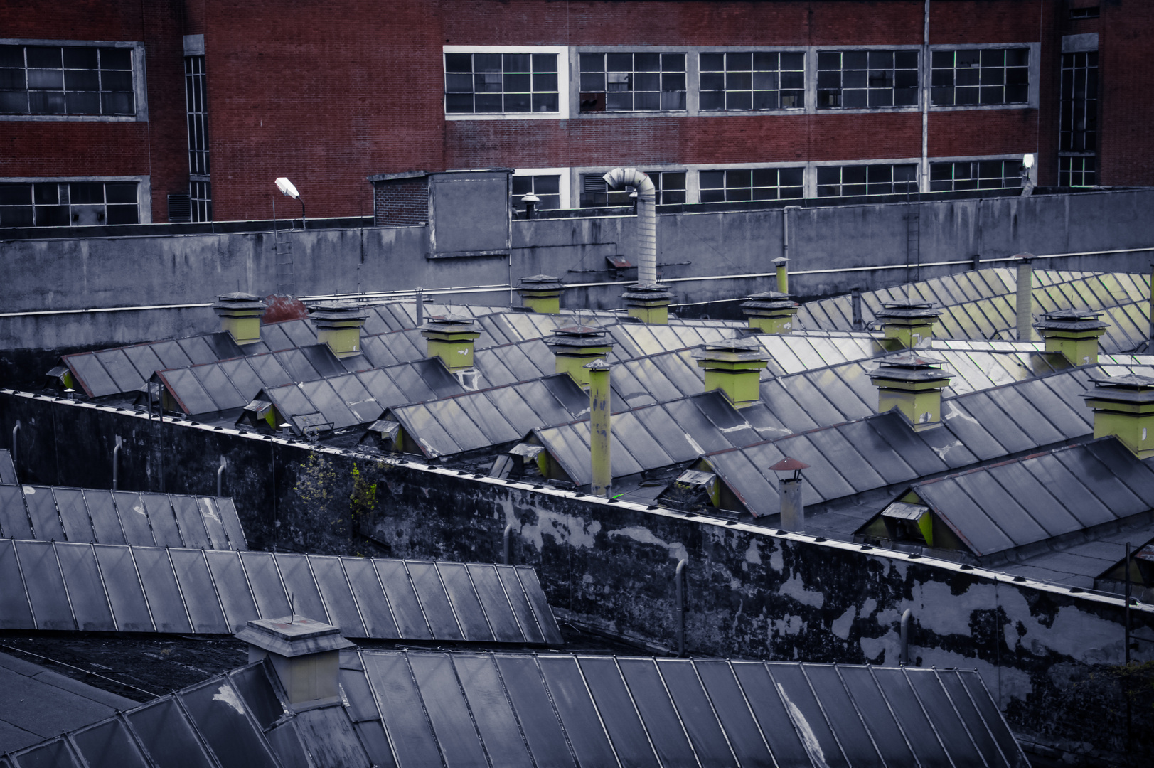 p37 Dachlandschaft