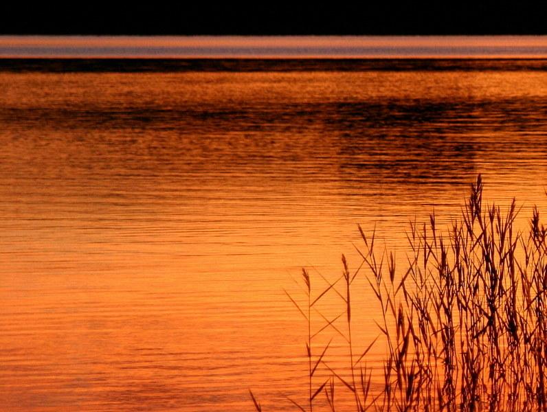 Pace della sera......