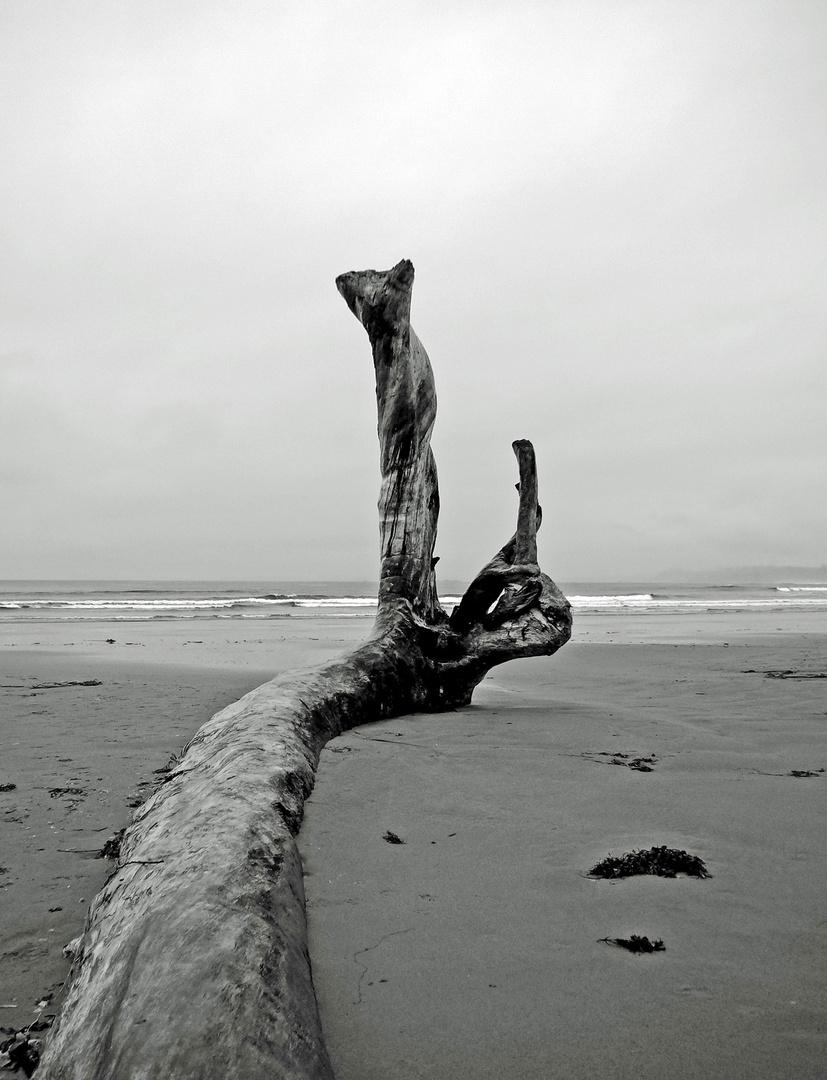 Pacific Rim III