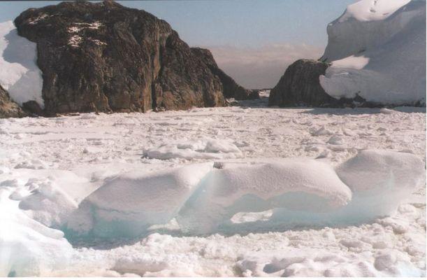 Packeis versperrt den Weg in der Antarktis