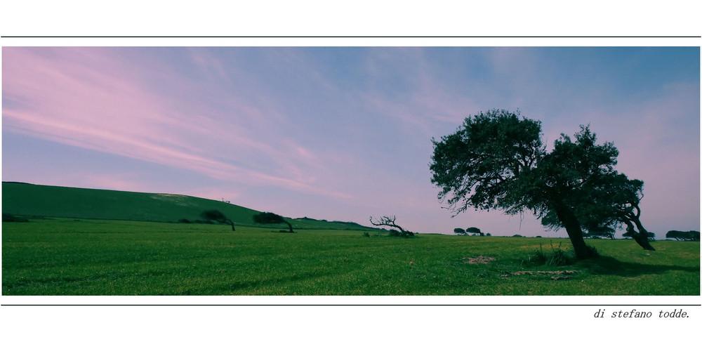 Paesaggio.