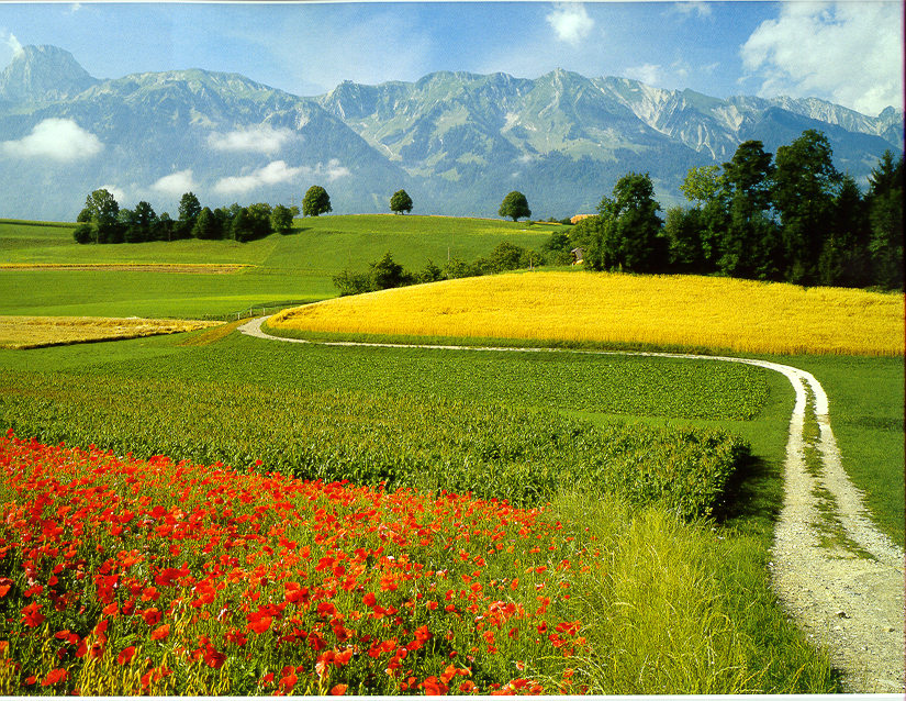 Paesaggio di campagna foto immagini mie foto natura for Immagini di case di campagna