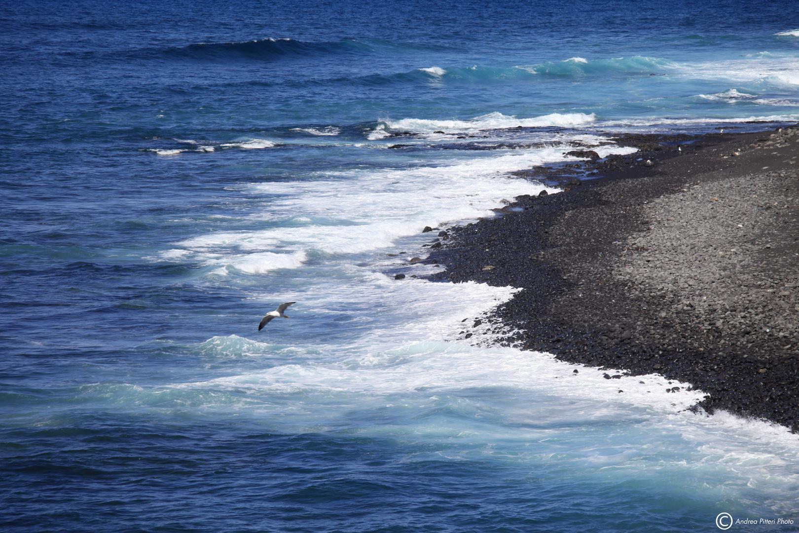 Paesaggio di mare foto immagini paesaggi mare ocean for Disegni di paesaggi di mare