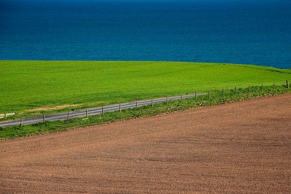 Paesaggio full colors