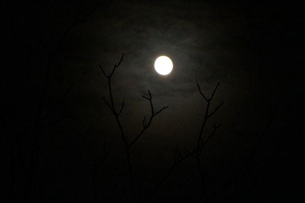 Paesaggio lunatico
