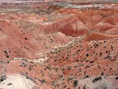 Painted Desert....