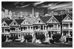 Painted Ladies Black & White
