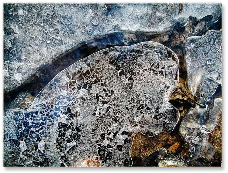 Paintings of a frozen Night