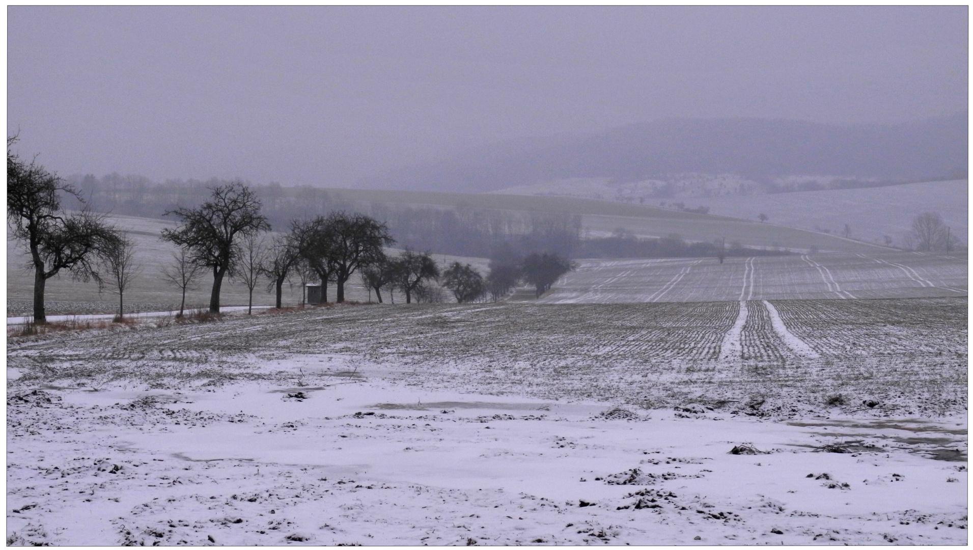 Paisaje invernal (winterliche Landschaft)