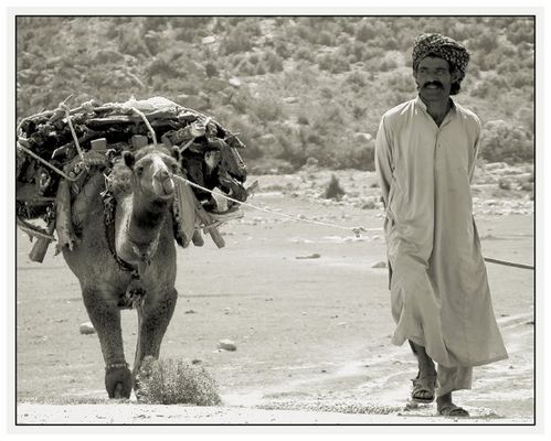 Pakistani Caravan