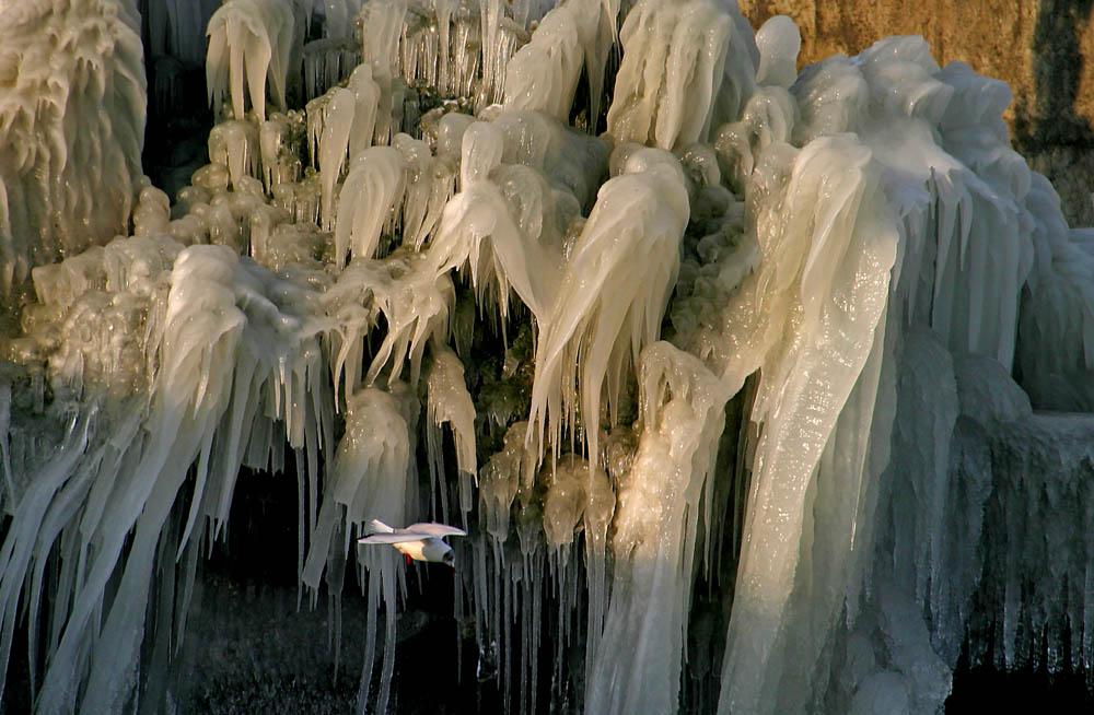 Palais des glaces sur le Léman