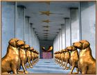"Palais ""Royal Canin"" :o)"