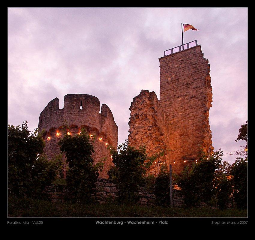 Palatina Mia 05 - Wachtenburg - Wachenheim - Pfalz