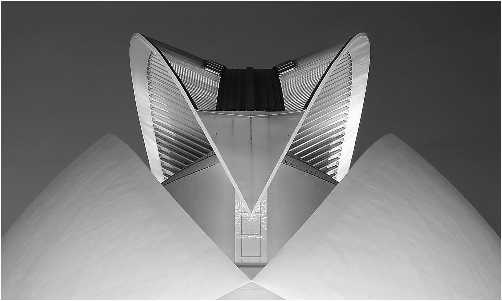 Palau De Les Arts b&w by Valfoto