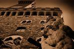 Palazzo Vecchio - special view