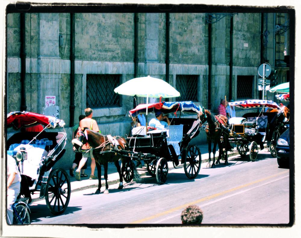 Palermo in carrozzella