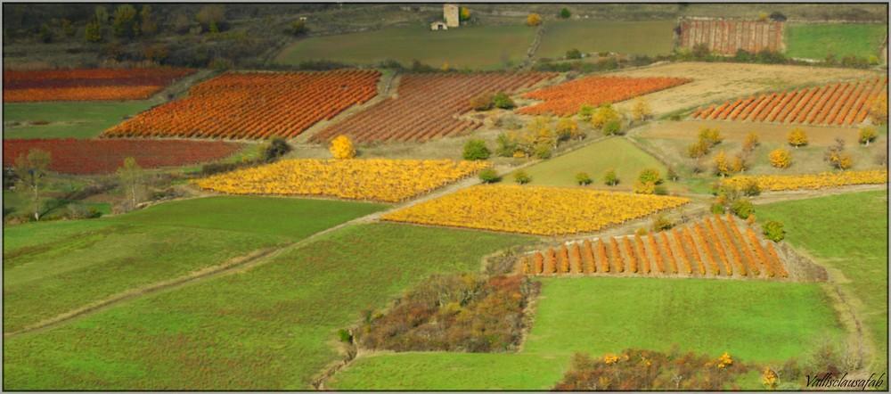 Palette d'automne