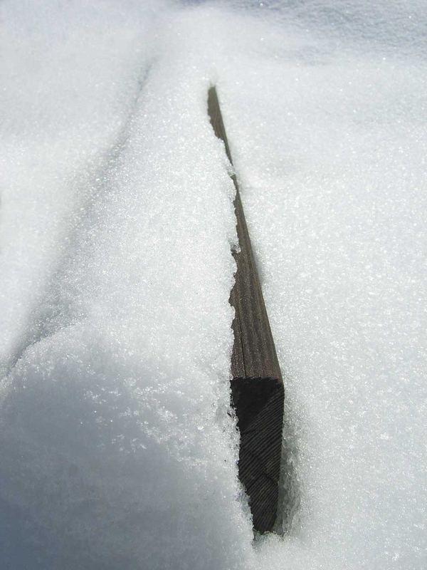 Palisade im Schnee
