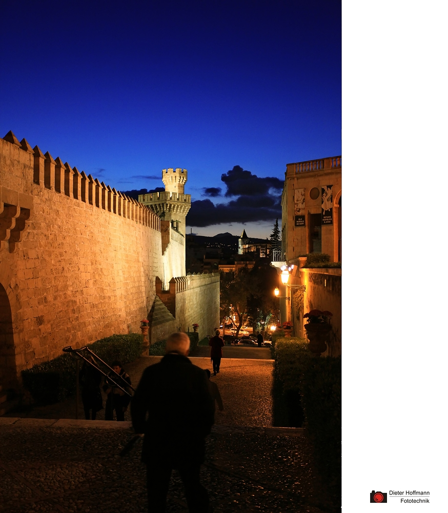 Palma bei Nacht ...