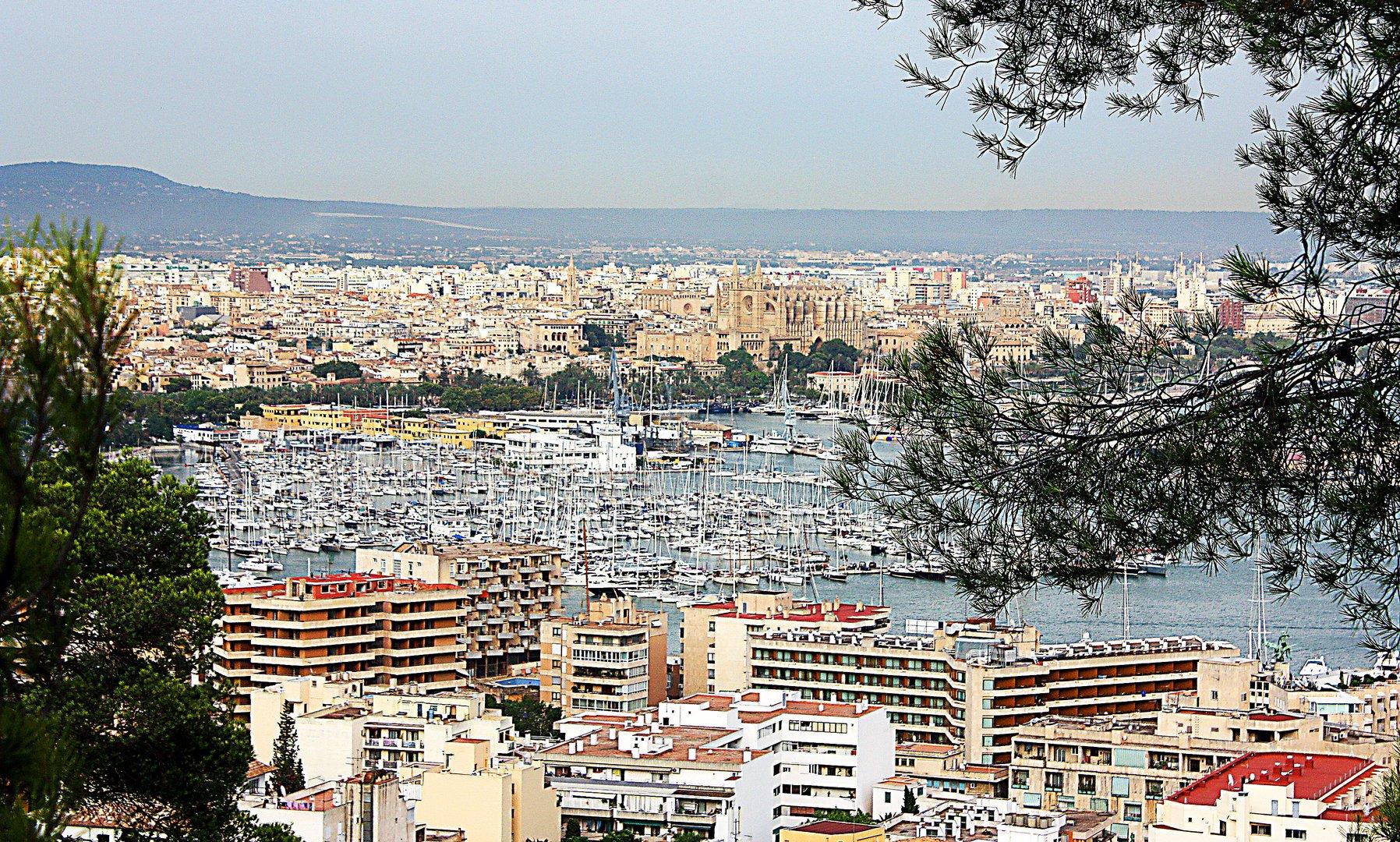 Palma, mi ciudad.
