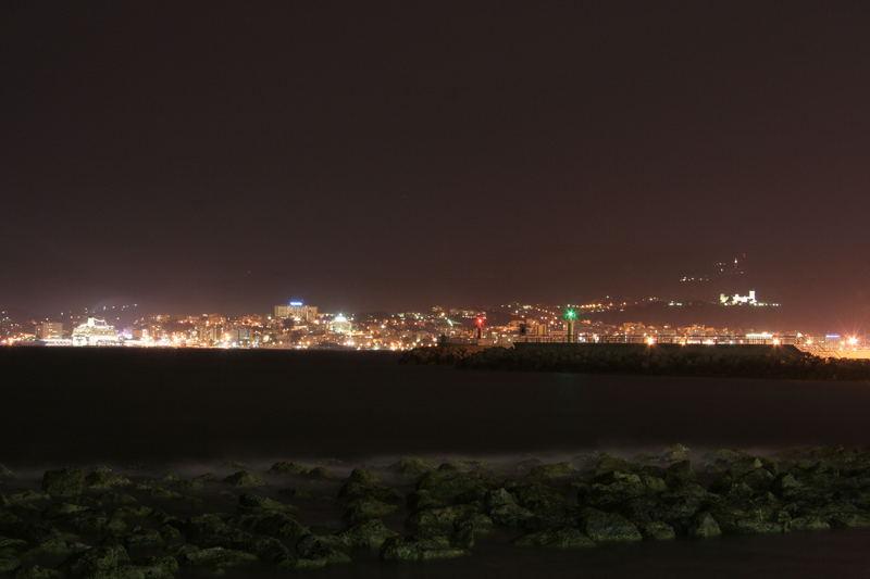 Palma nocturna